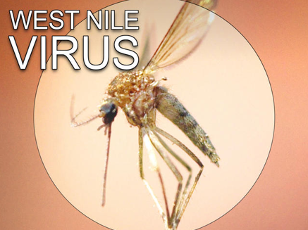 West Nile virus Vermont