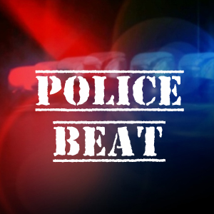 Three facing charges after fight in Sutton