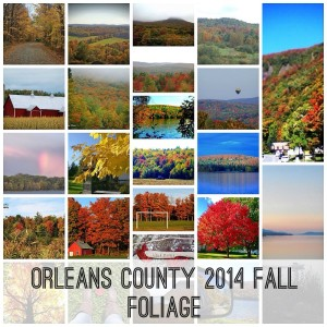 orleans county vermont fall foliage