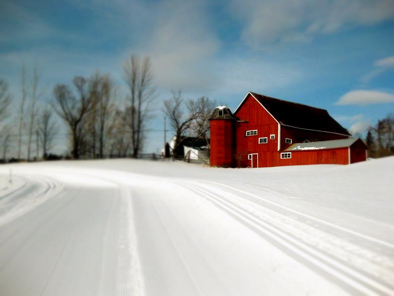 snowrun_Fotor