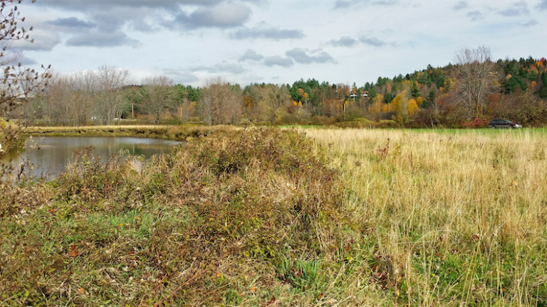 Troy farmers help protect Missisquoi River water quality and flood resilience