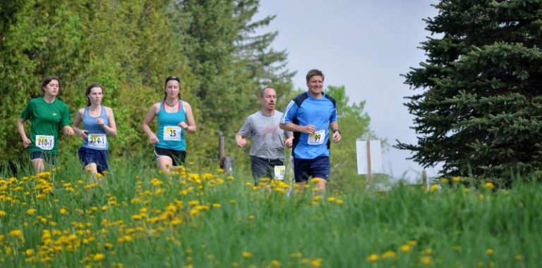 Dandelion Run back with in-person event kicking off May 22