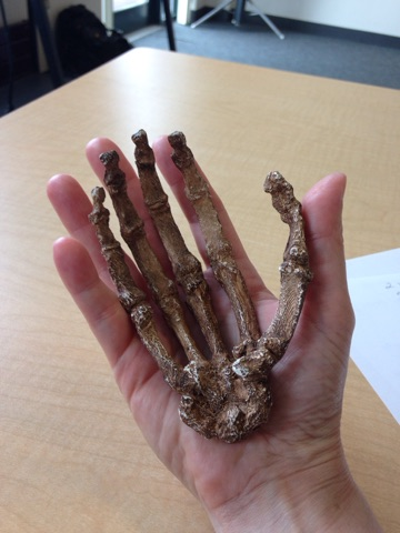 Tanya-Holds-Fossil-Hand.jpg