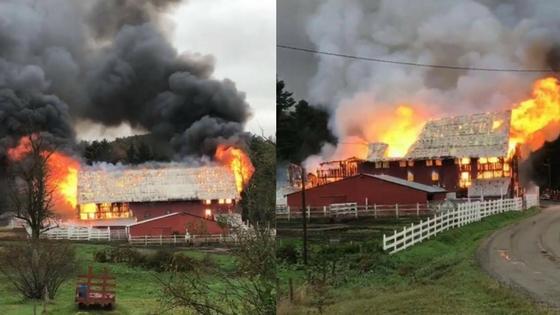 Historic barn destroyed in Barton