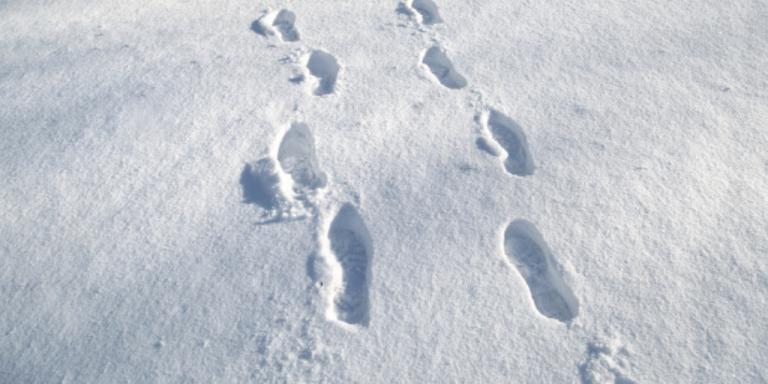 Rescue crews locate missing skier near Jay Peak
