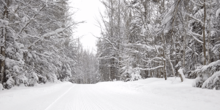 Wild & Woolly Competitive Snowshoe Races February 9 in East Charleston