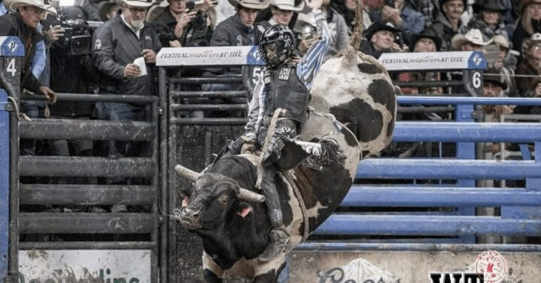 Chasing a Dream: Stanstead bull rider headed to Oklahoma to compete at the International Finals Rodeo