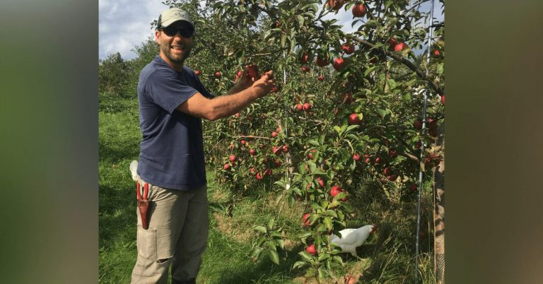 NorthWoods and Eden Ciders announce Apple Workshop Series