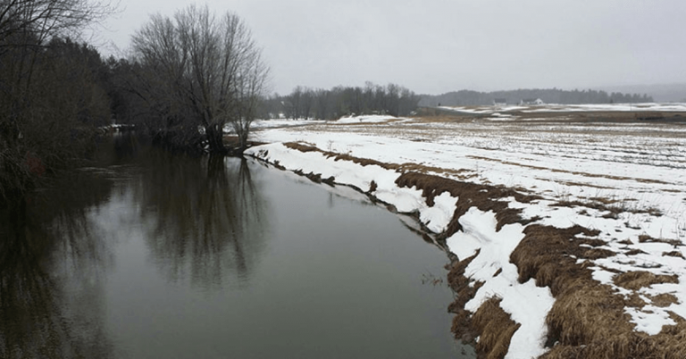 River corridor and wetlands in Westfield protected