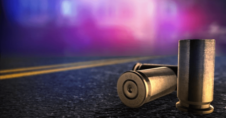 Shots fired at Barton home, 2 adults and infant inside